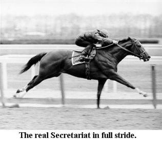 real-secretariat-2